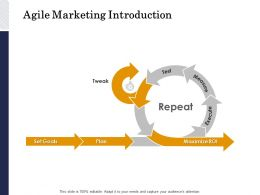 Agile Marketing Introduction Plan Ppt Powerpoint Presentation Styles File