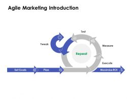 Agile Marketing Introduction Ppt Powerpoint Presentation Brochure