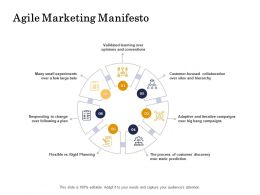 Agile Marketing Manifesto Process Ppt Powerpoint Presentation Example