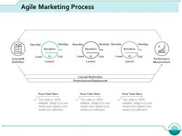 Agile Marketing Process Marketing Ppt Styles Professional
