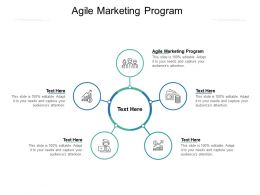 Agile Marketing Program Ppt Powerpoint Presentation Infographic Template Gridlines Cpb