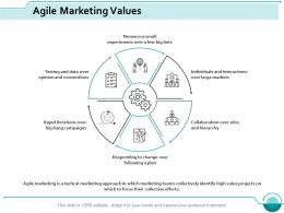 Agile Marketing Values Business Ppt Styles Professional