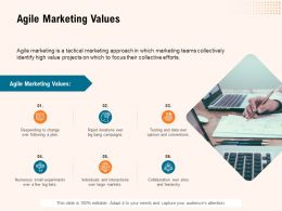 Agile Marketing Values Ppt Powerpoint Presentation Infographic