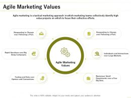 Agile Marketing Values Ppt Powerpoint Presentation Pictures Background Designs