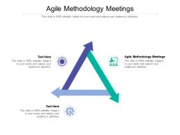 Agile Methodology Meetings Ppt Powerpoint Presentation Icon Cpb