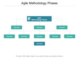 Agile Methodology Phases Ppt Powerpoint Presentation Rules Cpb