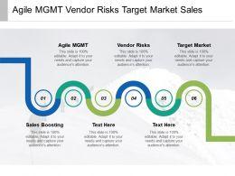 Agile Mgmt Vendor Risks Target Market Sales Boosting Cpb