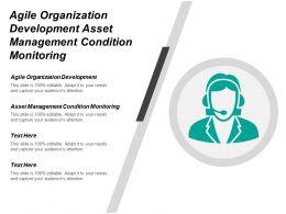 Agile Organization It Development Asset Management Condition Monitoring