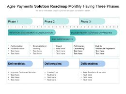 Agile Payments Solution Roadmap Monthly Having Three Phases