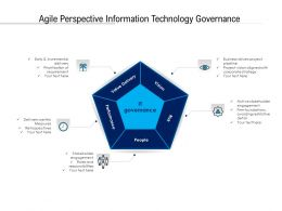 Agile Perspective Information Technology Governance