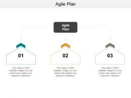 Agile Plan Ppt Powerpoint Presentation Model Summary Cpb