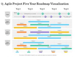Agile Project Five Year Roadmap Visualization