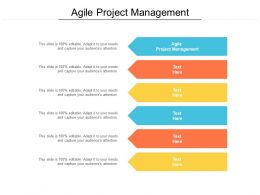 Agile Project Management Ppt Powerpoint Presentation Gallery Background Cpb