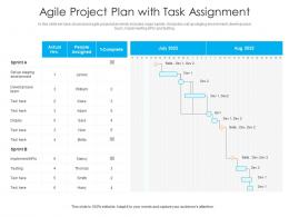 Agile Project Plan With Task Assignment