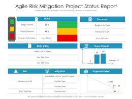 Agile Risk Mitigation Project Status Report