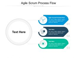 Agile Scrum Process Flow Ppt Powerpoint Presentation Model Example Topics Cpb