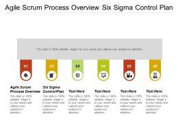 Agile Scrum Process Overview Six Sigma Control Plan Cpb