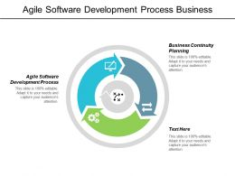 Agile Software Development Process Business Continuity Planning Change Process Cpb