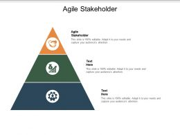 Agile Stakeholder Ppt Powerpoint Presentation Visual Aids Gallery Cpb