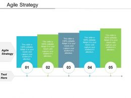 Agile Strategy Ppt Powerpoint Presentation Ideas Examples Cpb