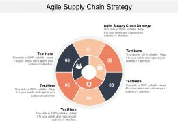 Agile Supply Chain Strategy Ppt Powerpoint Presentation File Example File Cpb