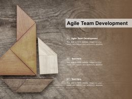 Agile Team Development Ppt Powerpoint Presentation Gallery Outfit Cpb