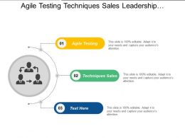 Agile Testing Techniques Sales Leadership Characteristic Business Creation