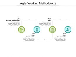 Agile Working Methodology Ppt Powerpoint Presentation Summary Gallery Cpb