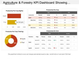 agriculture_and_forestry_kpi_dashboard_showing_productivity_per_crop_and_farm_Slide01