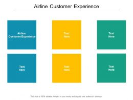 Airline Customer Experience Ppt Powerpoint Presentation Inspiration Clipart Images Cpb