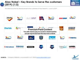 Akzo Nobel Key Brands To Serve The Customers 2019