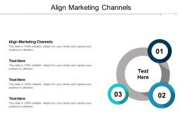 Align Marketing Channels Ppt Powerpoint Presentation Summary Designs Cpb