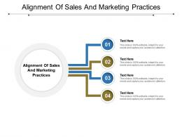 Alignment Of Sales And Marketing Practices Ppt Powerpoint Presentation Styles Icons Cpb