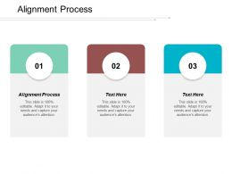 Alignment Process Ppt Powerpoint Presentation File Example Cpb