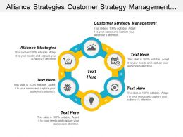 Alliance Strategies Customer Strategy Management Development Marketing Strategy Cpb