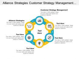 Alliance Strategies Customer Strategy Management Development Marketing Strategy Cpb