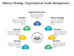 Alliance Strategy Organizational Goals Management Challenges Strategic Objectives Cpb