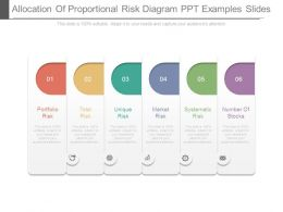 Allocation Of Proportional Risk Diagram Ppt Examples Slides