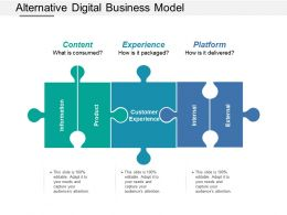 Alternative Digital Business Model