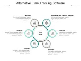 Alternative Time Tracking Software Ppt Powerpoint Presentation Model Gallery Cpb