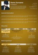 Amazing Example Of Creative Resume Template For Professionals