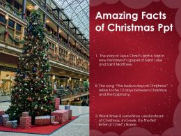 Amazing Facts Of Christmas Ppt