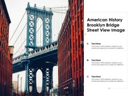 American History Brooklyn Bridge Street View Image