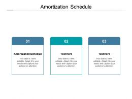 Amortization Schedule Ppt Powerpoint Presentation Model Graphic Images Cpb