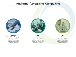 Analysing Advertising Campaigns Ppt Powerpoint Presentation Pictures Files Cpb
