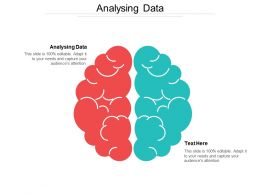 Analysing Data Ppt Powerpoint Presentation File Summary Cpb