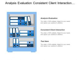 Analysis Evaluation Consistent Client Interaction Strategy Formulation Level