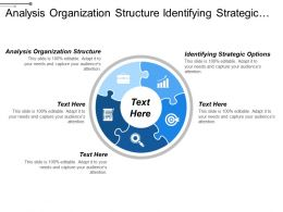 Analysis Organization Structure Identifying Strategic Options Selecting Strategy