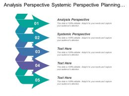 Analysis Perspective Systemic Perspective Planning Organizing Control Team Leadership