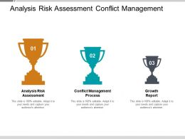 Analysis Risk Assessment Conflict Management Process Growth Report Cpb